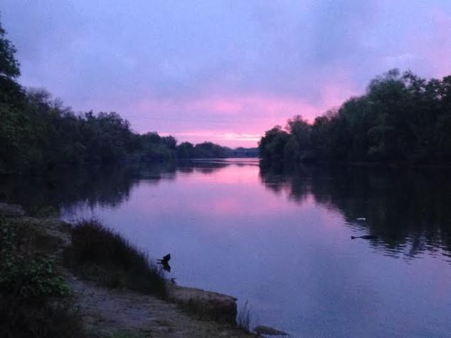 Passing Shots:  Lower American River Watershed