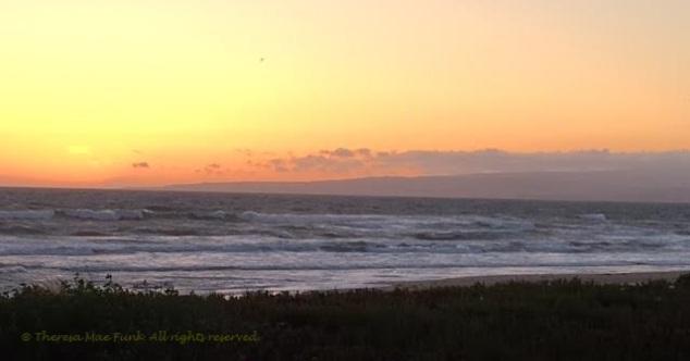 Pelican Beach Watsonville CA